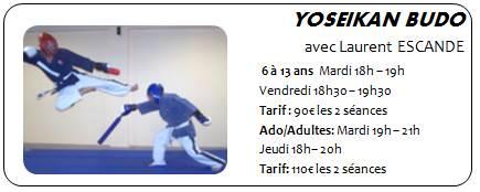 Yosei kan